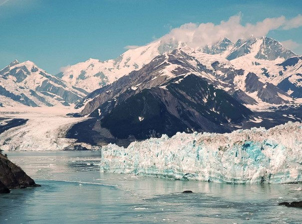Venture through Disenchantment Bay to see the spectacular Hubbard Glacier. We hope to spot Brown bears on this voyage, particularly in Kinak Bay in beautiful Katmai National Park.