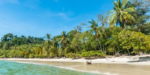 Manuel Antonio National Park and its white-sand beaches.
