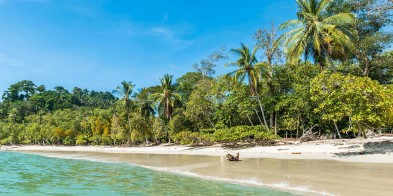Throughout the expedition cruise, you can enjoy the slow pace of life, unwind on the beach, or swim in the warm waters. Quepos and Golfito in Costa Rica offer fantastic activities as our next stops.