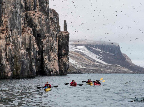 Kayaking near Alkefjellet, Svalbard. This Svalbard expedition cruise is unique, with a great variety of landing sites and exciting Arctic experiences. We aim to sail above 80º N for chances to hike, kayak and more on land and water.