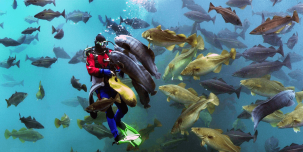 Visit Atlanterhavsparken in Ålesund, one of Northern Europe's largest salt-water aquariums.