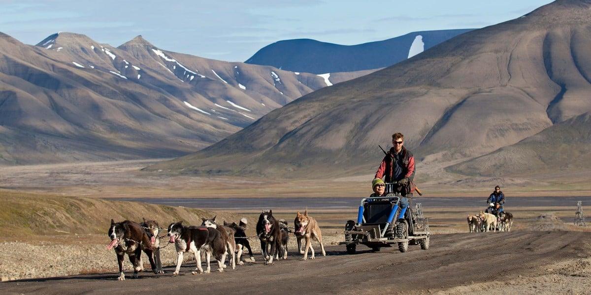 Spitsbergen Travel Summer Hurtigruten Uk Hurtigruten Uk