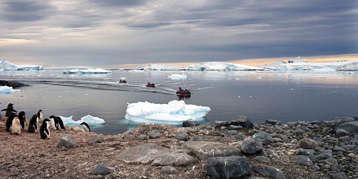 Antarctica Cruises Antarctica The Polar Circle And Beyond  Hurtigruten UK