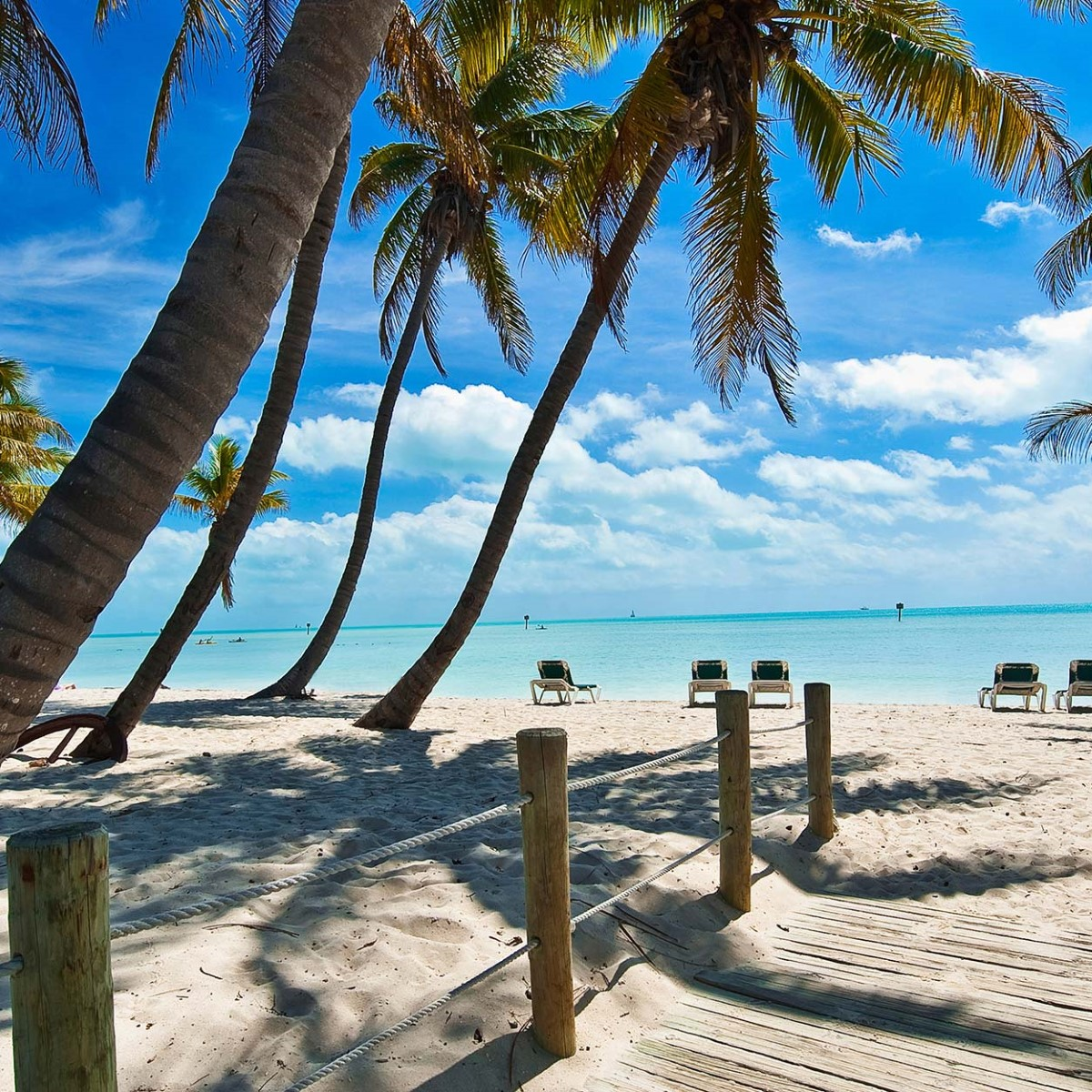 Caribbean Islands: Expedition In The Caribbean Sea: Puerto Limon